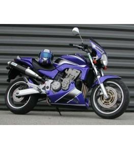 Sabot moteur EVO1 Hornet 900 02-06 vue sur moto complète