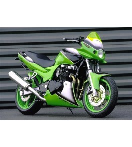 Tête de fourche ZR7 triple optiques vue sur moto complète