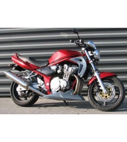 Ecopes de radiateur Bandit 600 00-05 vue sur moto complète