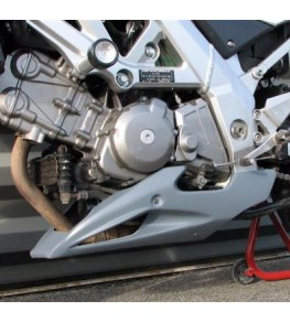Sabot moteur Evo 2 SV 650 03-10