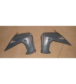 Ecopes de radiateur Evo 2 SV N 650 03-10 par paire