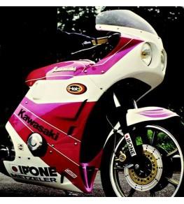 Carénage Sport 406 en 4 parties montage sur Kawasaki