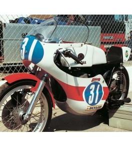 Carénage en 1 partie 250 TD2 moto complète
