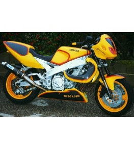 Sabot moteur Street FZR 1000 Exup 91-93 montage Street Bike vue profil