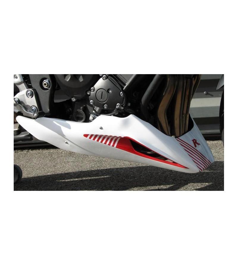 Sabot moteur FZ1 06-15
