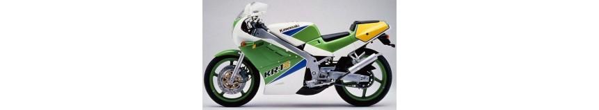 Carénages en stratifié polyester pour Kawasaki KR1 S, carénage en 2 parties