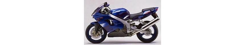Carénages en stratifié polyester pour Kawasaki ZX9R de 2000 à 2001, carénage en 2 parties avec ou sans découpe